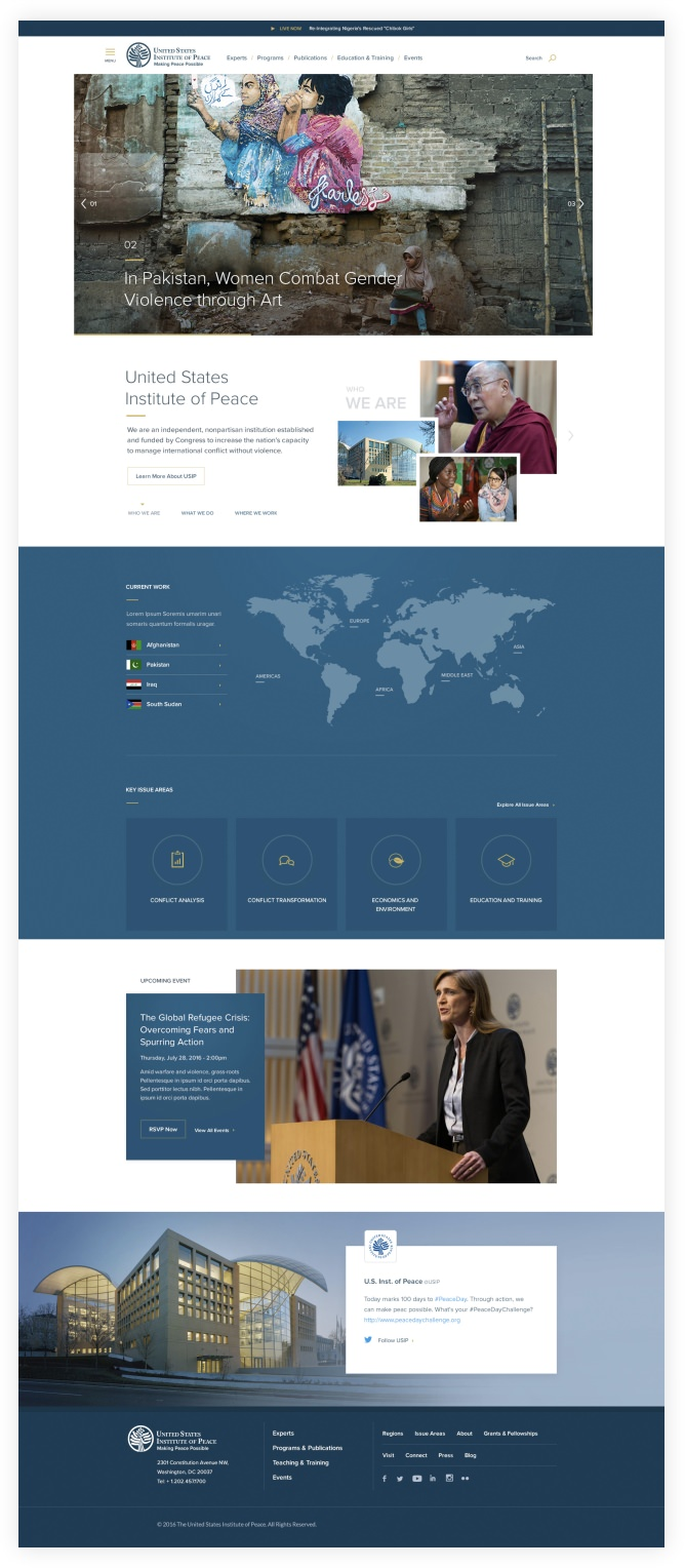 Screenshot of the USIP Website