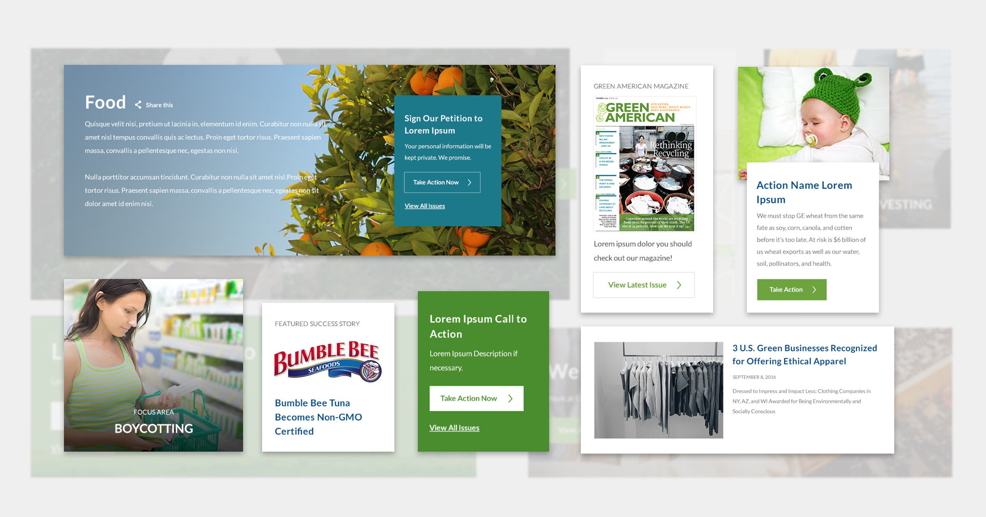 Green America web design details