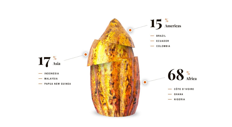 World Cocoa Foundation Statistics Image