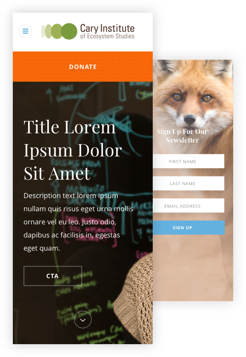 Mobile design comps for Cary's 'Donation' and 'Sign-up' pages -- features photography of a fox in the wild.