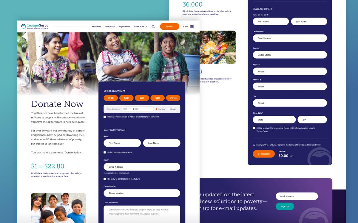 TechnoServe's donation page.