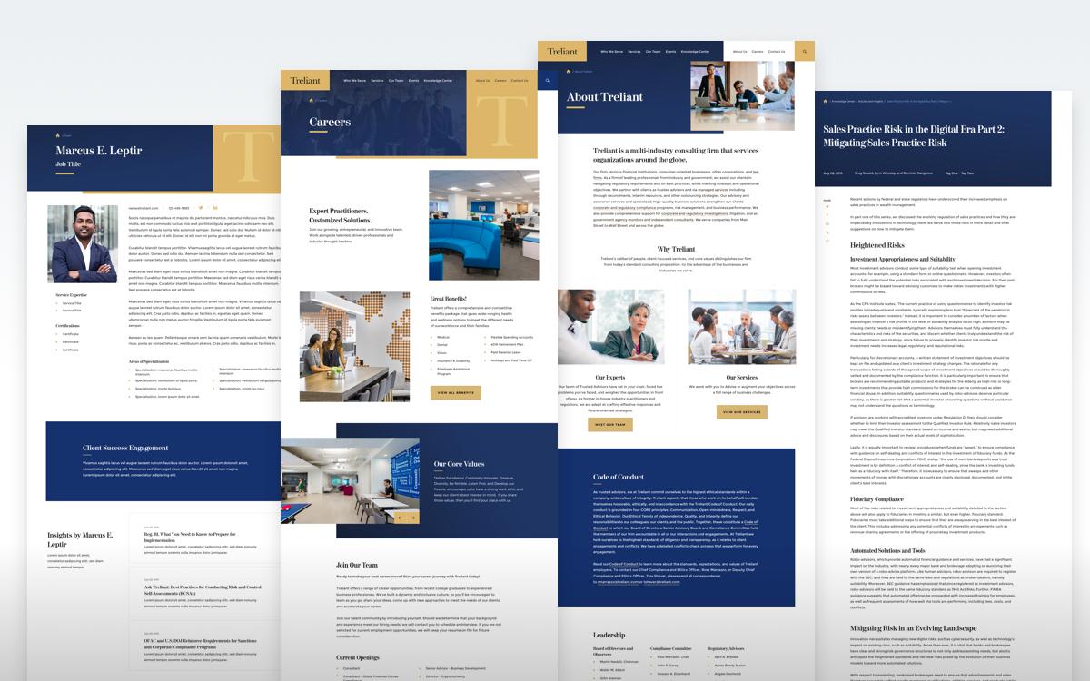 Treliant Interior Page Designs